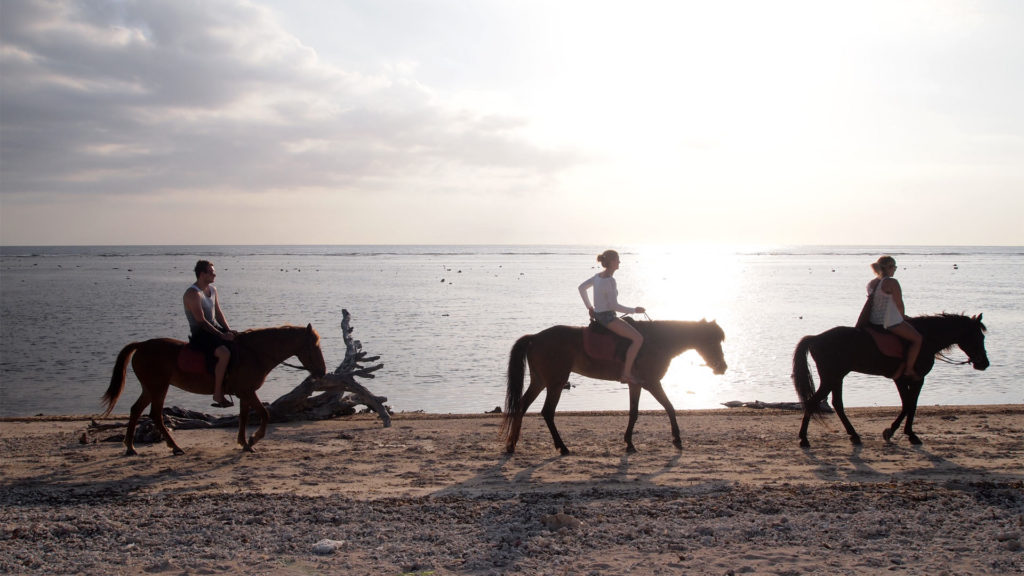 Horseback riding at sunset on Gili Trawangan