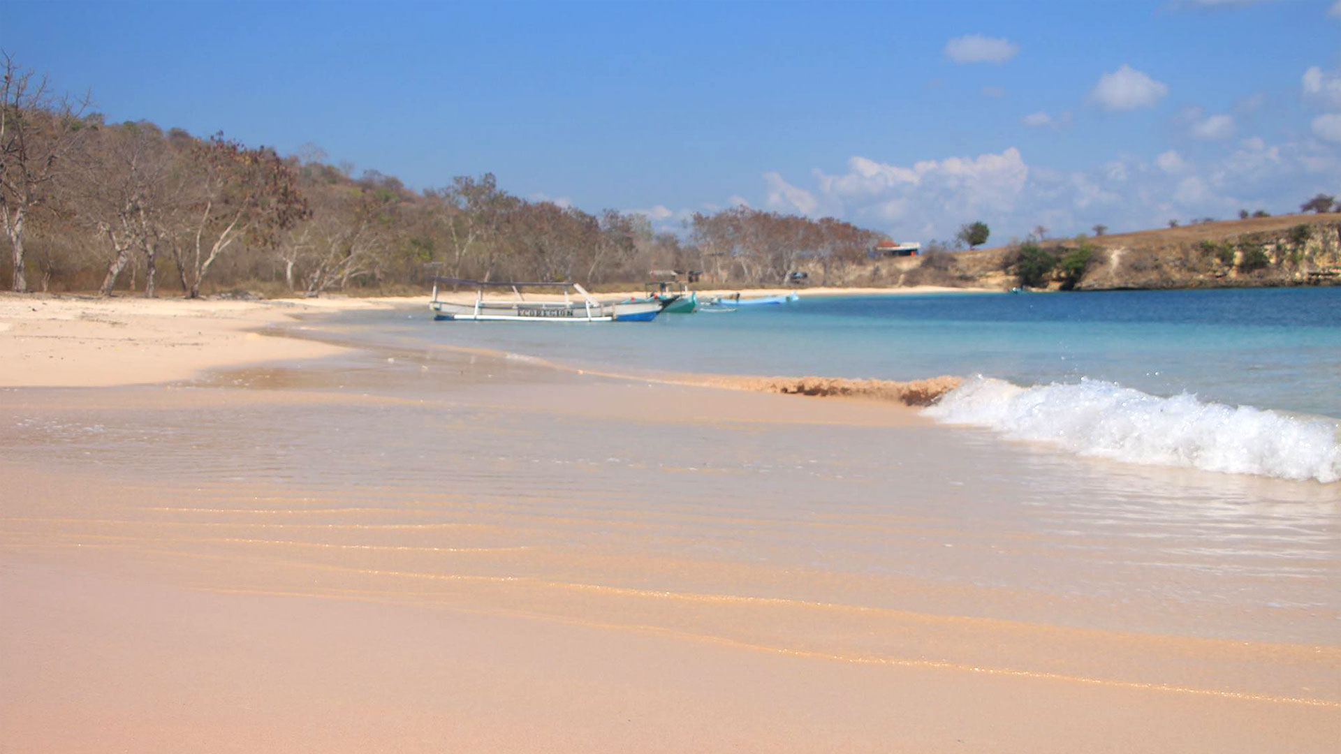 Pink Beach In The Southeast Of Lombok