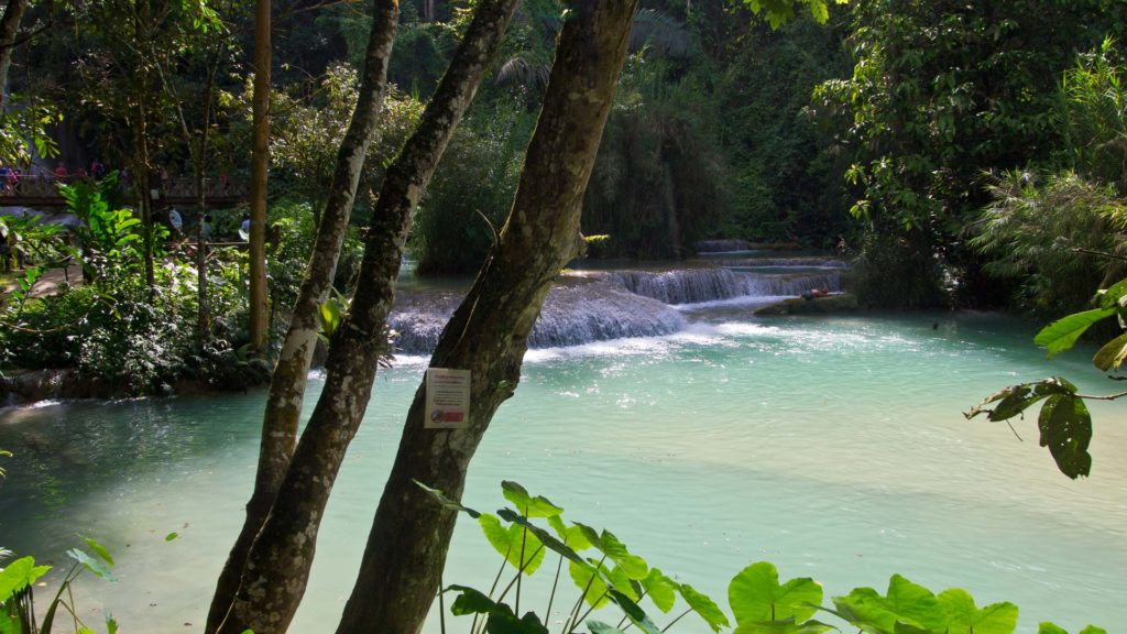 The natural pool of the Kuang Si Falls, Luang Prabang