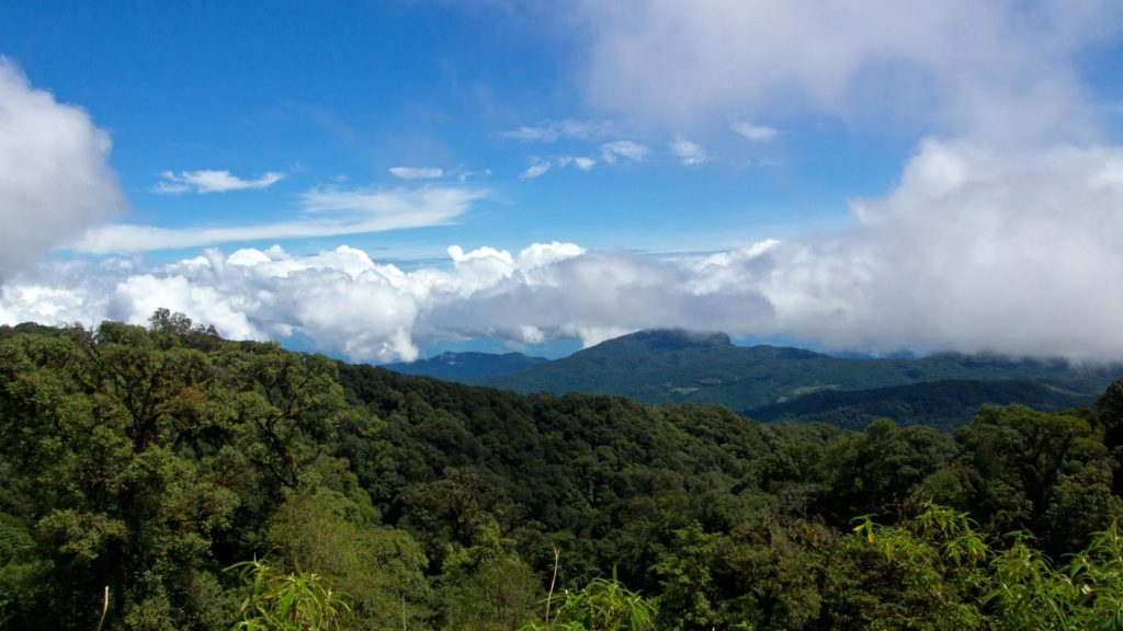 View of Doi Inthanon National Park near Chiang Mai