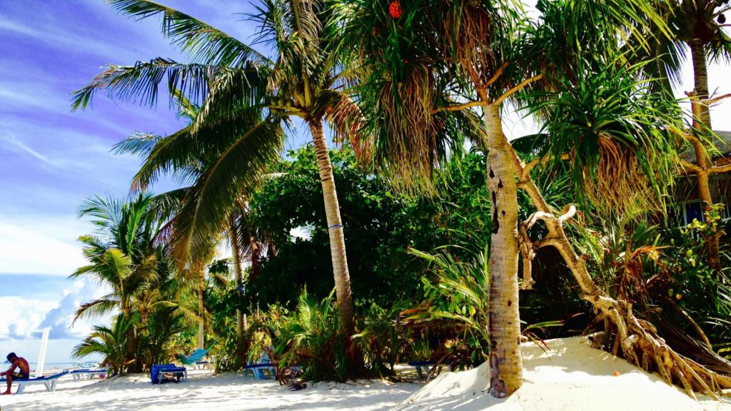 Strand des Exotic Island Dive & Beach Resorts auf Malapascua