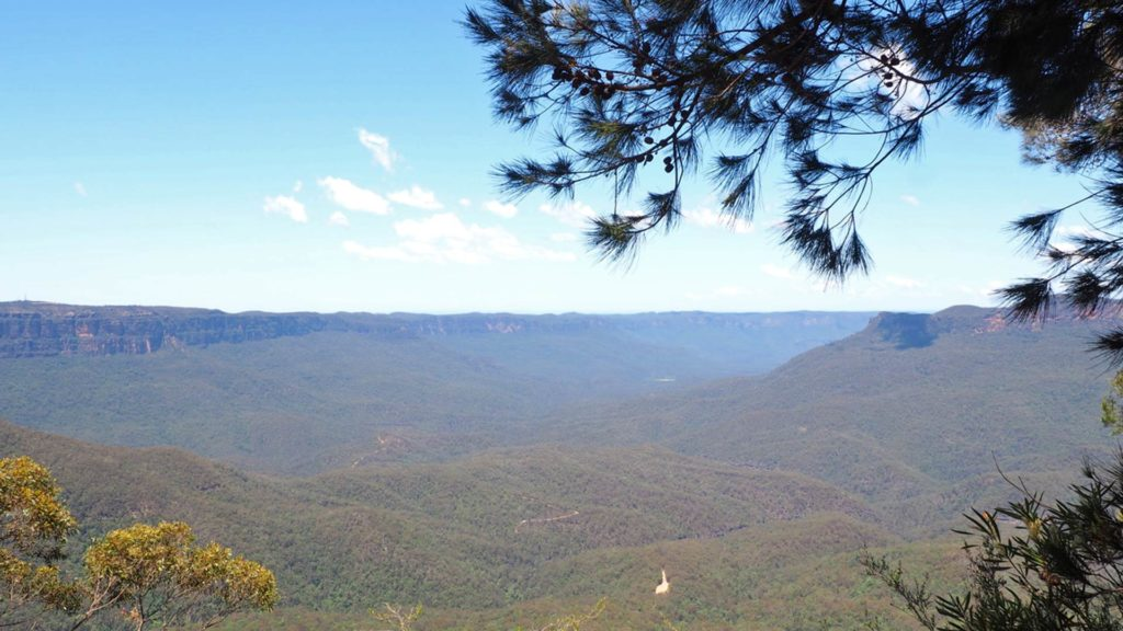Aussicht im Blue Mountains National Park in der Nähe von Sydney