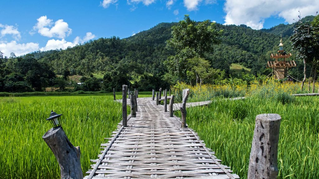 Die Bamboo Bridge in Pai
