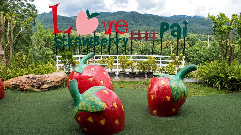 Love Strawberry Cafe in Pai