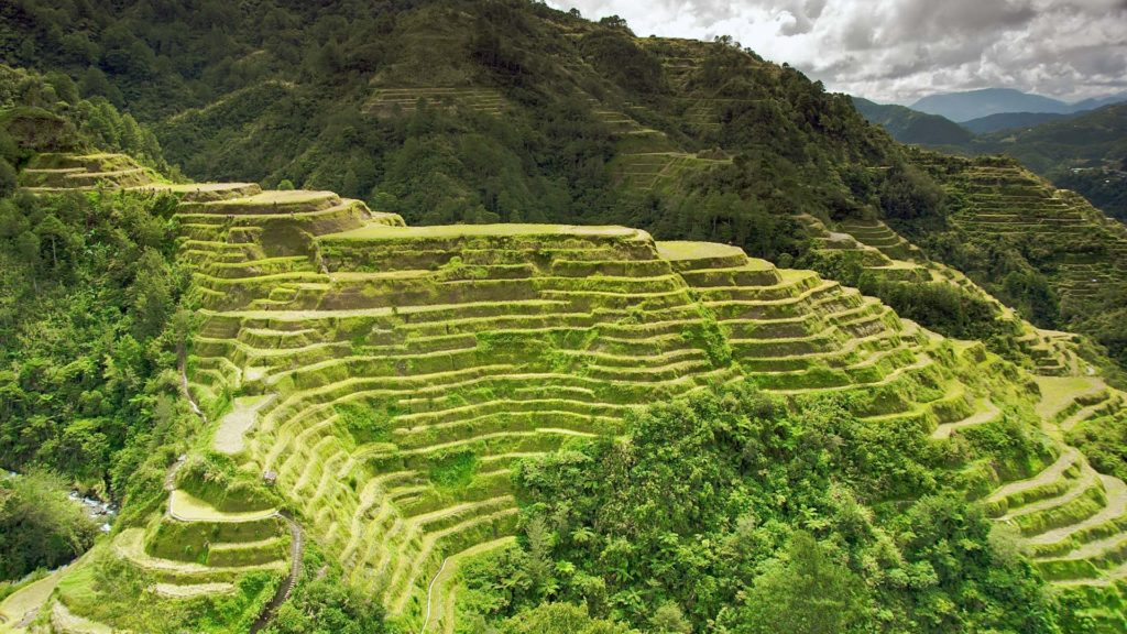 The famous Banaue rice terraces in the Philippines