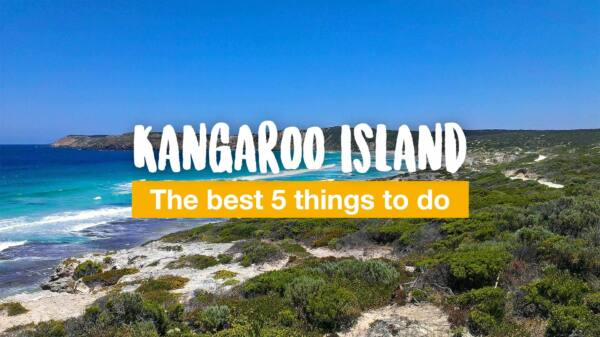 Kangaroo Island - the best 5 things to do