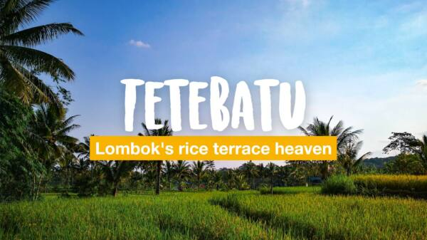 Tetebatu – Lombok's rice terrace heaven