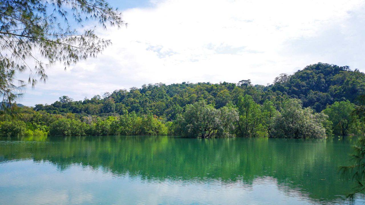 Aussicht auf die Mangroven von Langkawi