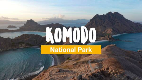 Komodo: diving and snorkeling safari in the Komodo National Park