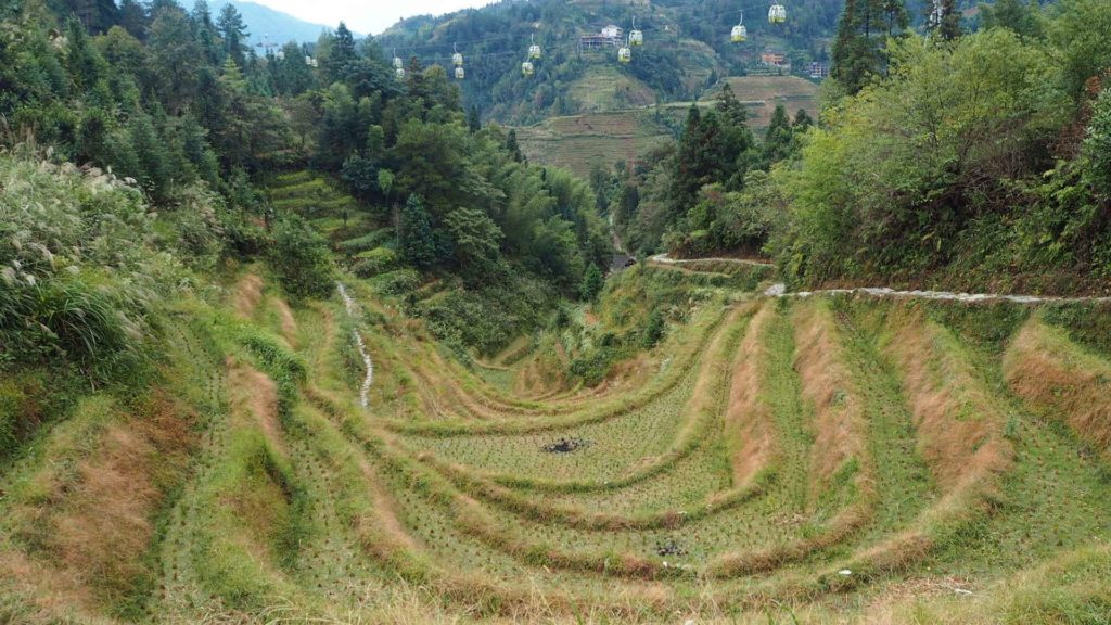 Longsheng rice terraces, China