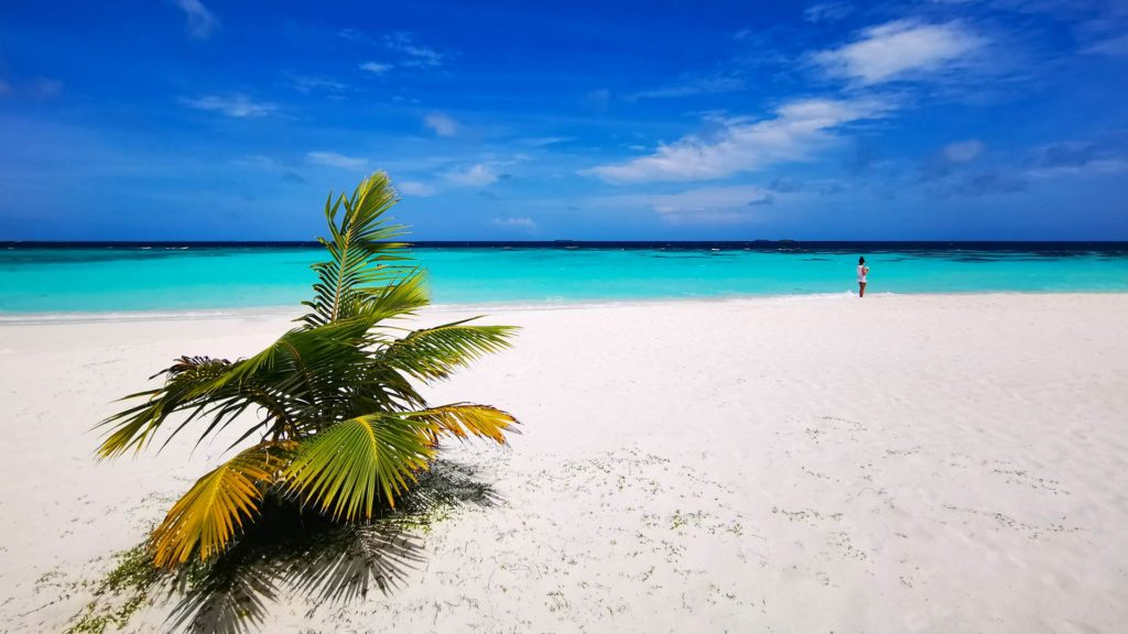 On the beach of Thulhagiri Island in the North Male Atoll, Maldives