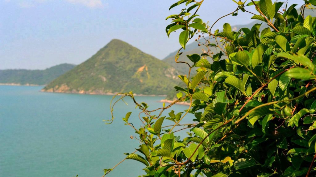 Hike to the fishing village Tai O, Hong Kong
