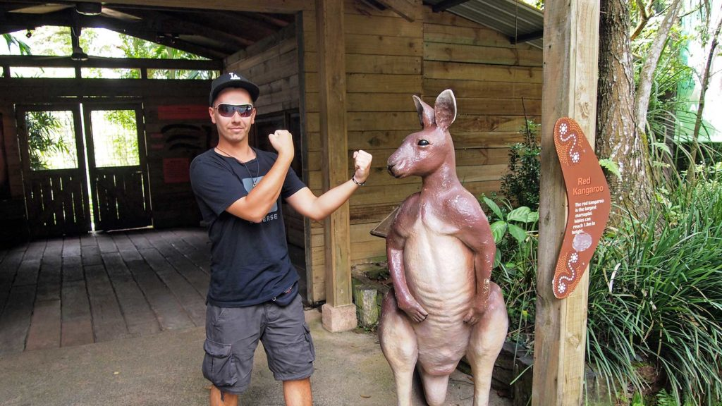 Marcel on his way to the kangaroos, Singapore Zoo
