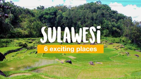 6 exciting places to see on Sulawesi