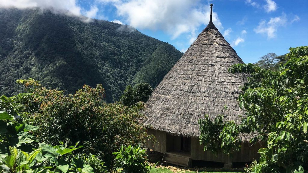 One of the traditional Wae Rebo houses in the mountains of Flores