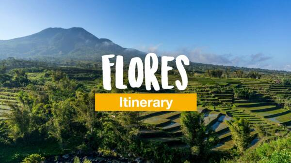 Flores itinerary - all highlights and information