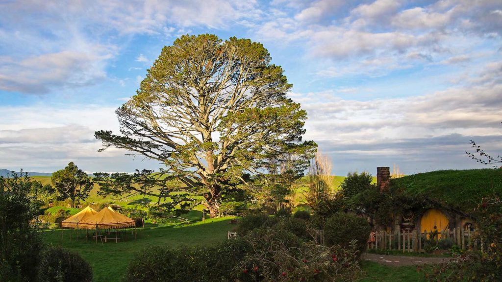 The Hobbits' festive tree, Hobbiton Movie Set Tours in Matamata, location of Lord of the Rings and The Hobbit, New Zealand